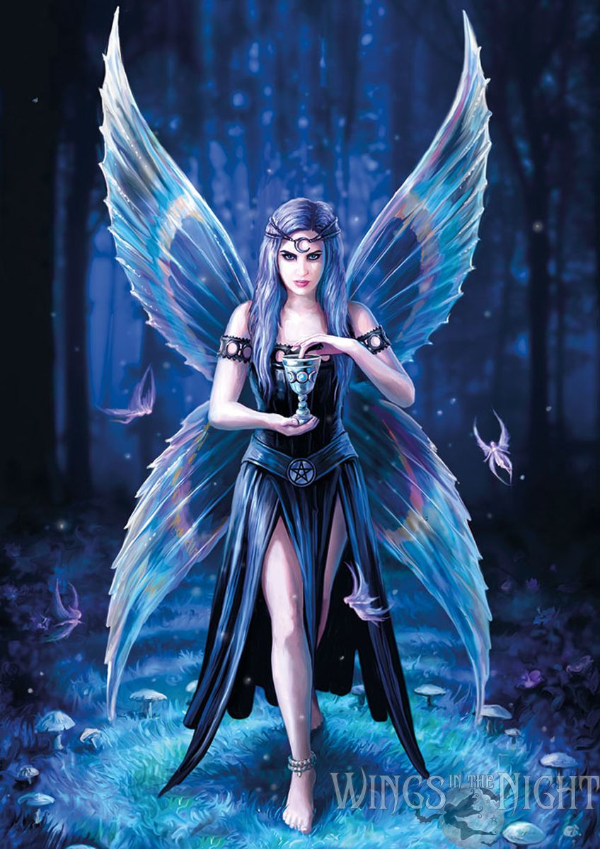 Stokes enchantment gothic fairy greeting card anne stokes enchantment gothic fairy greeting card kristyandbryce Images