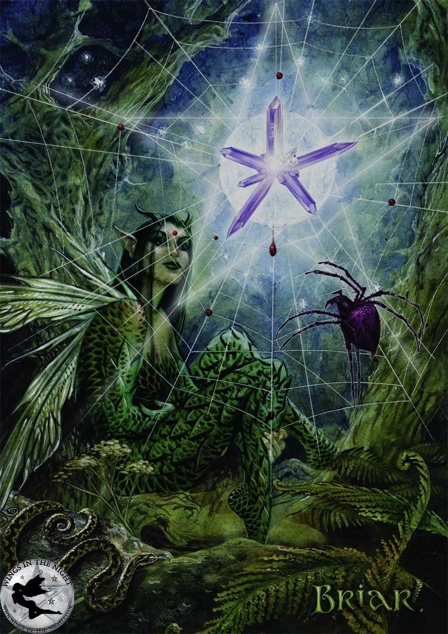 Web of wyrd magical greeting card briar web of wyrd magical greeting card kristyandbryce Choice Image